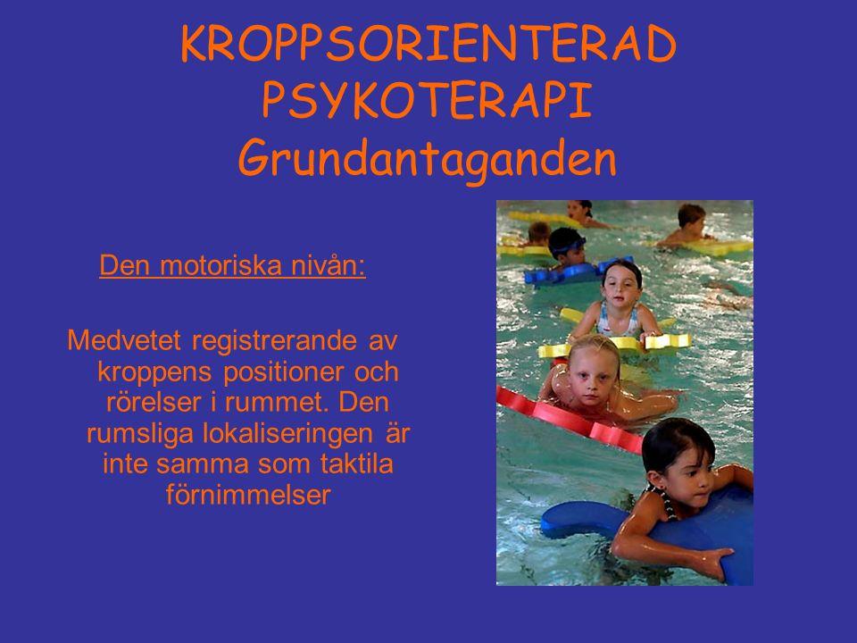 KROPPSORIENTERAD PSYKOTERAPI Grundantaganden Den motoriska nivån: Medvetet registrerande av kroppens positioner och rörelser i rummet.