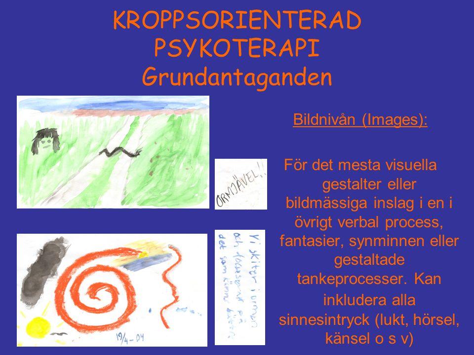 KROPPSORIENTERAD PSYKOTERAPI Grundantaganden Bildnivån (Images): För det mesta visuella gestalter eller bildmässiga inslag i en i övrigt verbal process, fantasier, synminnen eller gestaltade tankeprocesser.