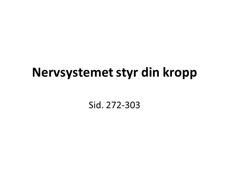 Nervsystemet styr din kropp Sid. 272-303