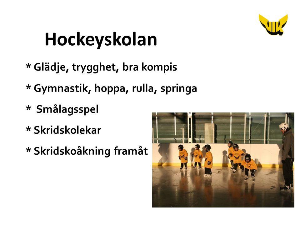 * Glädje, trygghet, bra kompis * Gymnastik, hoppa, rulla, springa * Smålagsspel * Skridskolekar * Skridskoåkning framåt Hockeyskolan