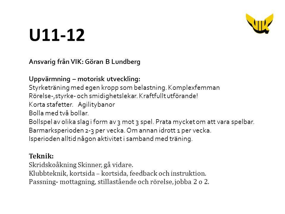 Ansvarig från VIK: Göran B Lundberg Uppvärmning – motorisk utveckling: Styrketräning med egen kropp som belastning.