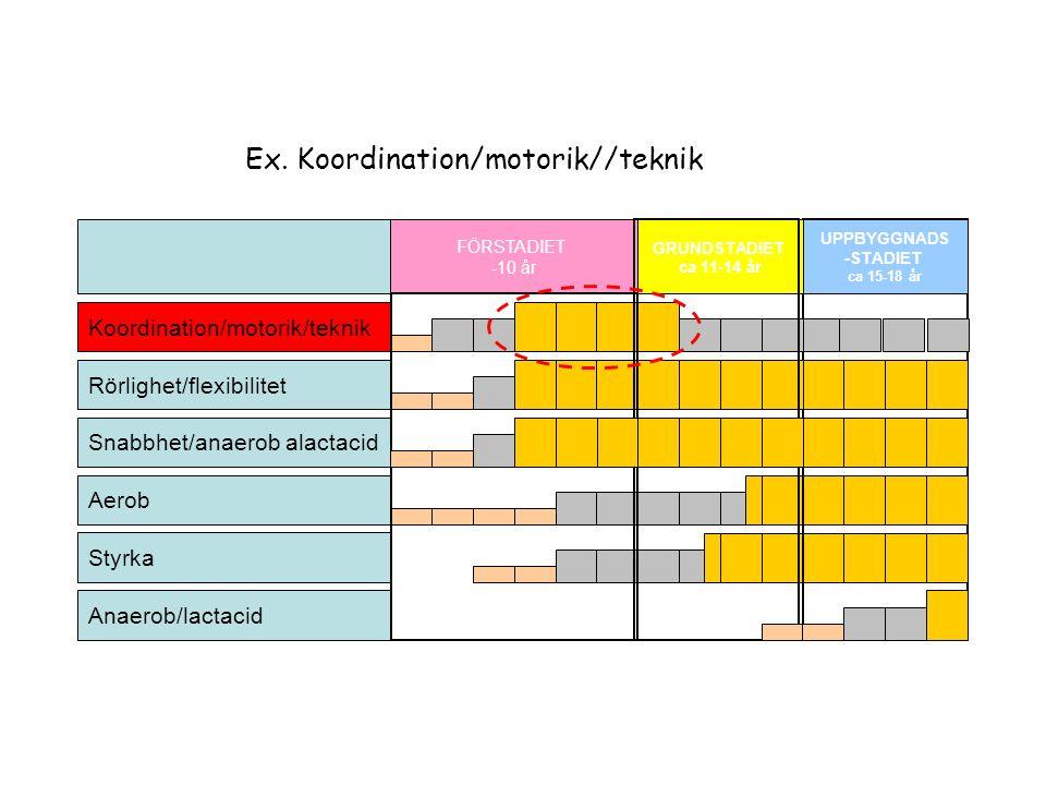 Koordination/motorik/teknik Styrka Aerob FÖRSTADIET -10 år GRUNDSTADIET ca 11-14 år UPPBYGGNADS -STADIET ca 15-18 år Rörlighet/flexibilitet Anaerob/lactacid Snabbhet/anaerob alactacid Ex.