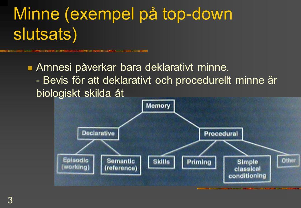 3 Minne (exempel på top-down slutsats) Amnesi påverkar bara deklarativt minne.