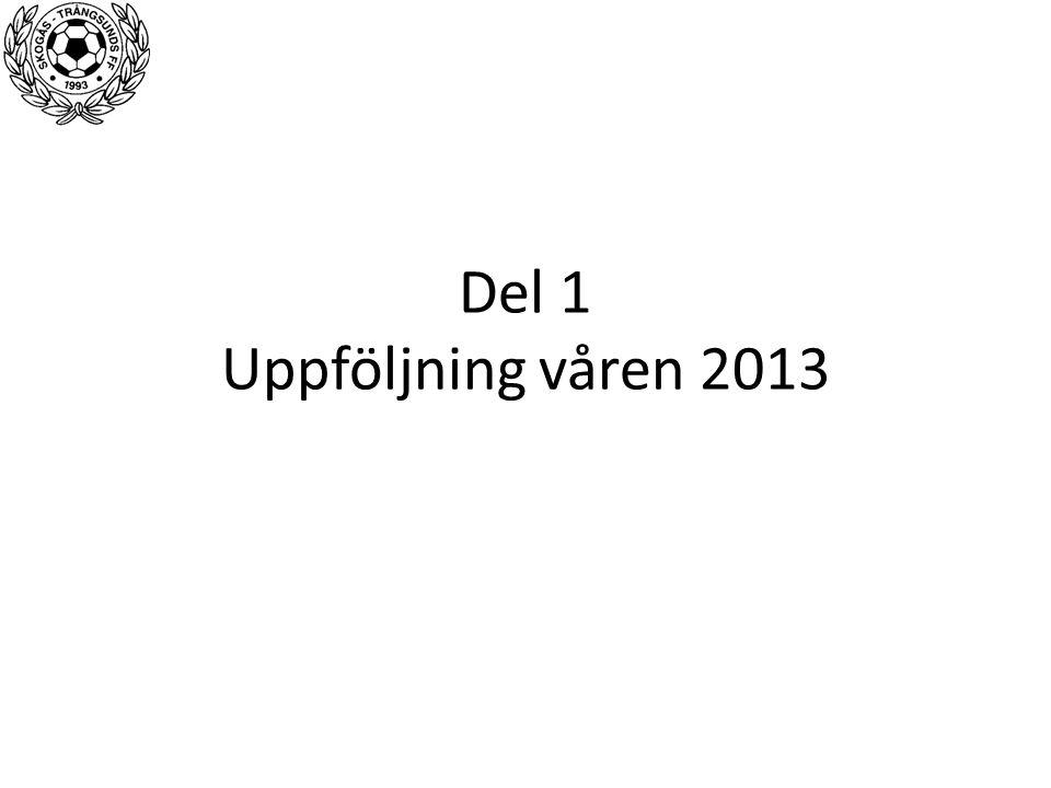 Del 1 Uppföljning våren 2013