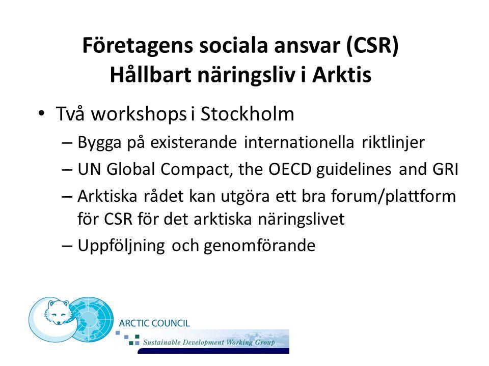 Företagens sociala ansvar (CSR) Hållbart näringsliv i Arktis Två workshops i Stockholm – Bygga på existerande internationella riktlinjer – UN Global C