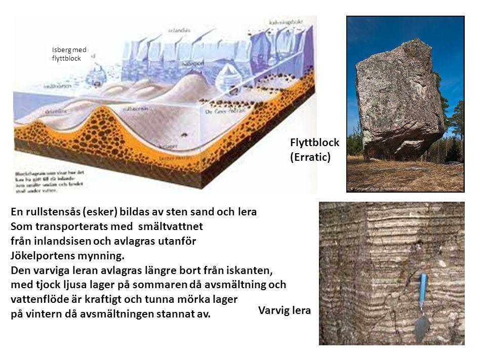 Flyttblock (Erratic) Varvig lera En rullstensås (esker) bildas av sten sand och lera Som transporterats med smältvattnet från inlandsisen och avlagras utanför Jökelportens mynning.