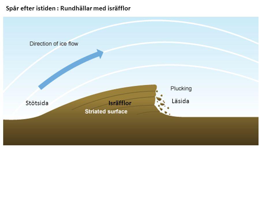 Spår efter istiden : Rundhällar med isräfflor Stötsida Läsida Isräfflor