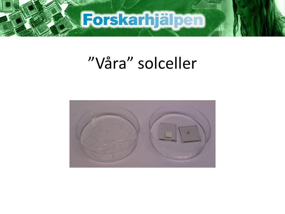 Våra solceller
