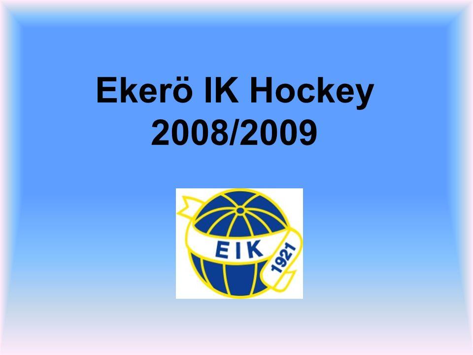 Ekerö IK Hockey 2008/2009