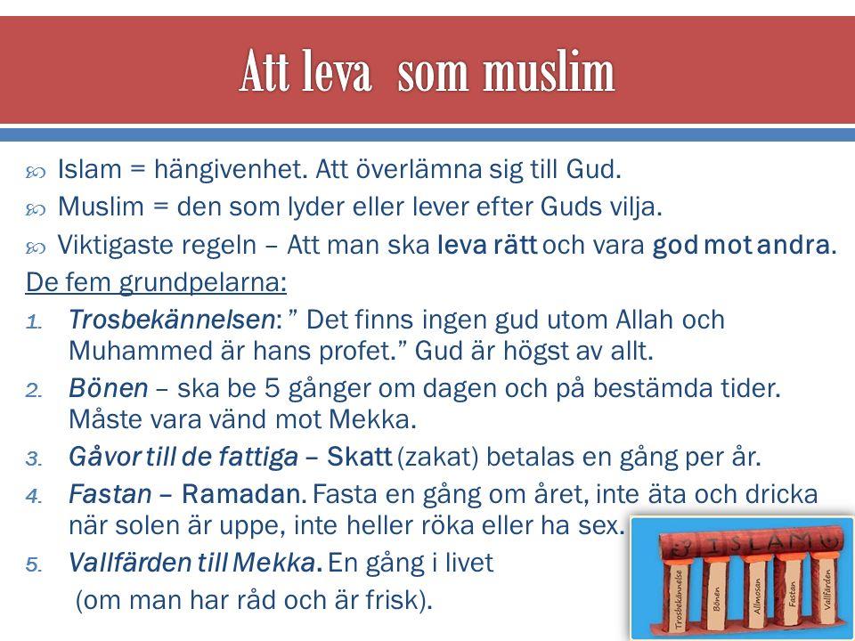  Islam = hängivenhet. Att överlämna sig till Gud.