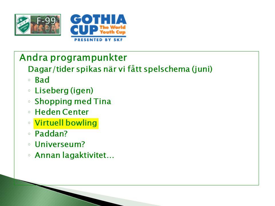 Andra programpunkter Dagar/tider spikas när vi fått spelschema (juni) ◦ Bad ◦ Liseberg (igen) ◦ Shopping med Tina ◦ Heden Center ◦ Virtuell bowling ◦ Paddan.
