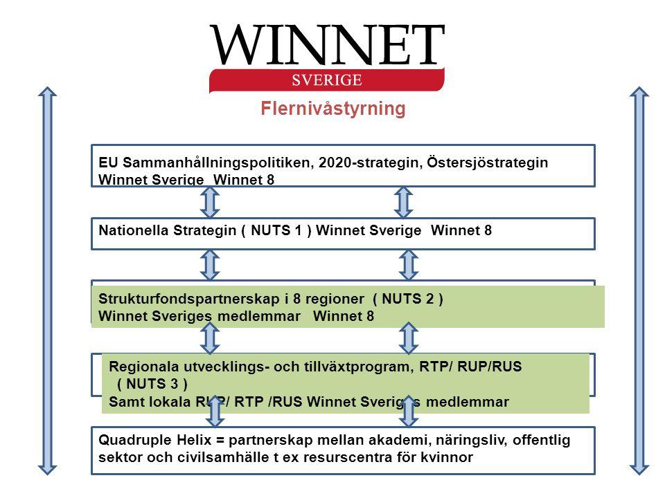 Flernivåstyrning EU Sammanhållningspolitiken, 2020-strategin, Östersjöstrategin Winnet Sverige Winnet 8 Nationella Strategin ( NUTS 1 ) Winnet Sverige