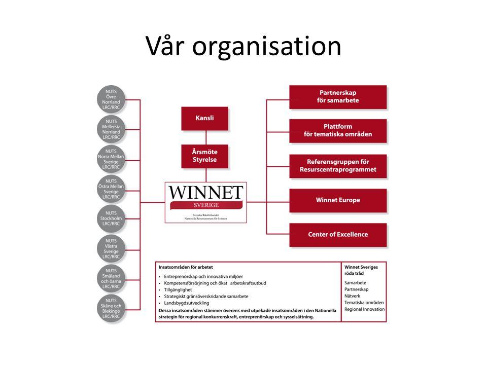Vår organisation