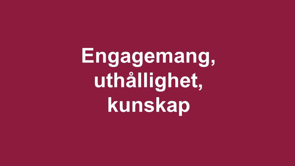 Svenska Afghanistankommittén | www.sak.se Engagemang, uthållighet, kunskap
