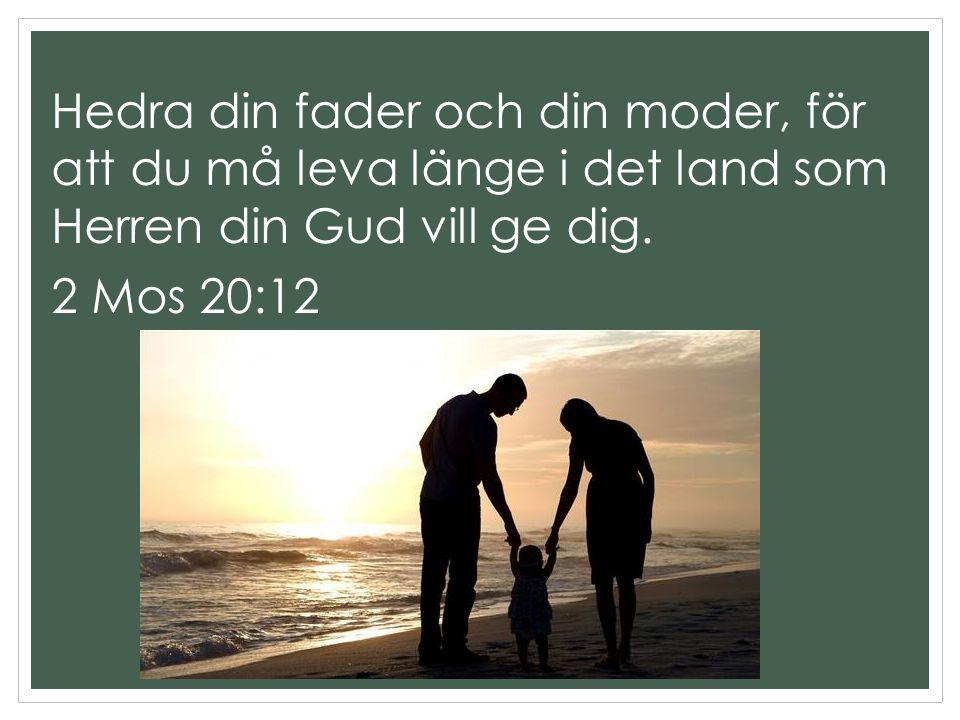 Hedra din fader och din moder, för att du må leva länge i det land som Herren din Gud vill ge dig. 2 Mos 20:12
