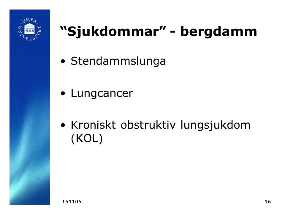 Sjukdommar - bergdamm Stendammslunga Lungcancer Kroniskt obstruktiv lungsjukdom (KOL) 15110516