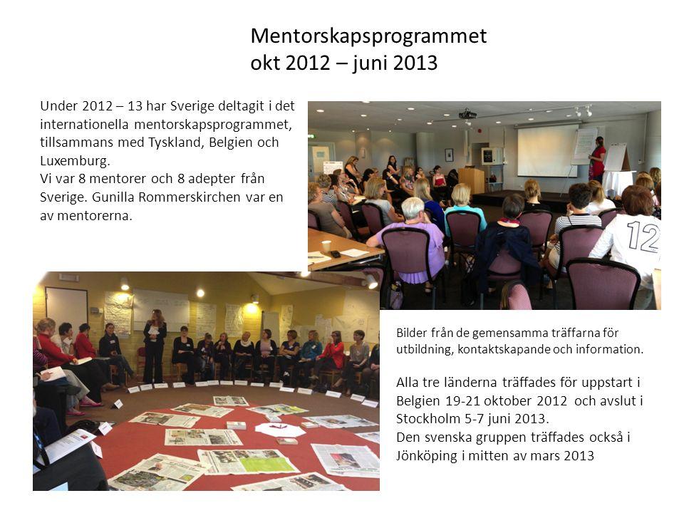 Mentorskapsprogrammet okt 2012 – juni 2013 Under 2012 – 13 har Sverige deltagit i det internationella mentorskapsprogrammet, tillsammans med Tyskland, Belgien och Luxemburg.