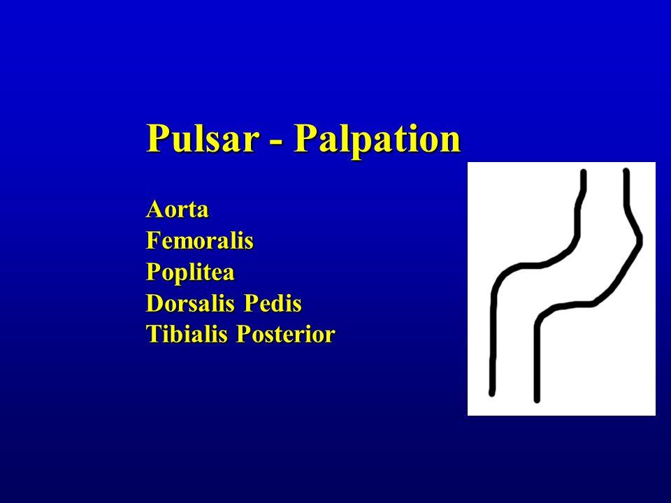 Pulsar - Palpation AortaFemoralisPoplitea Dorsalis Pedis Tibialis Posterior