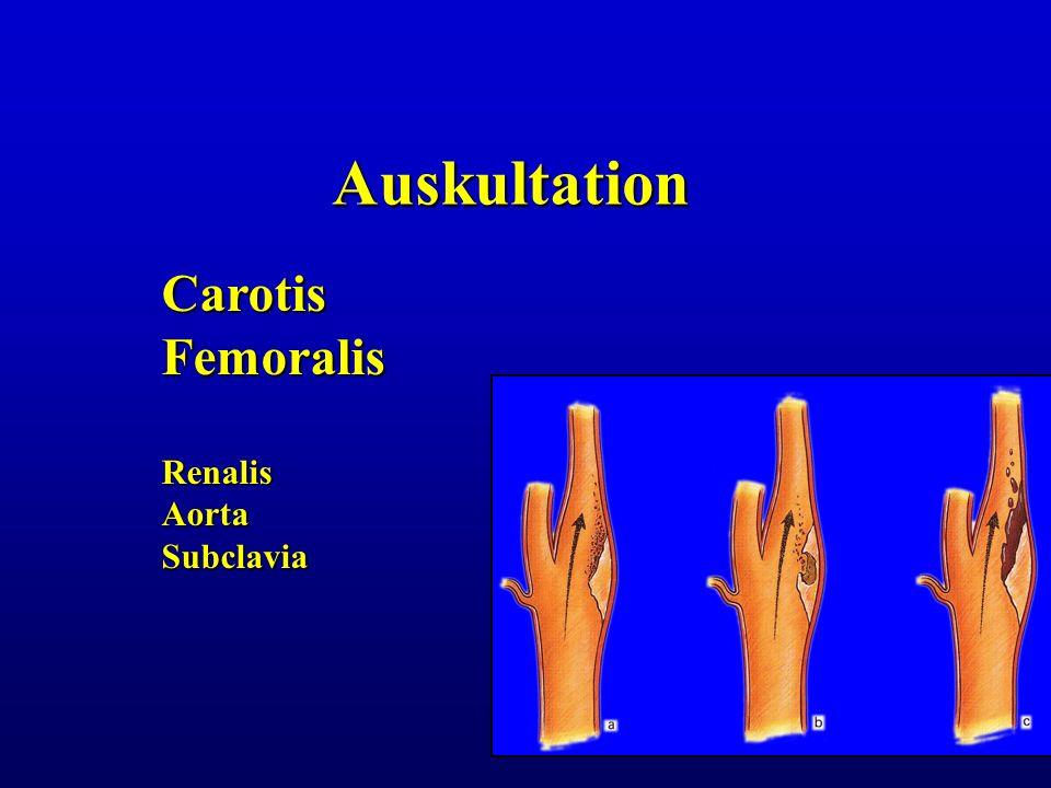 Auskultation CarotisFemoralisRenalisAortaSubclavia