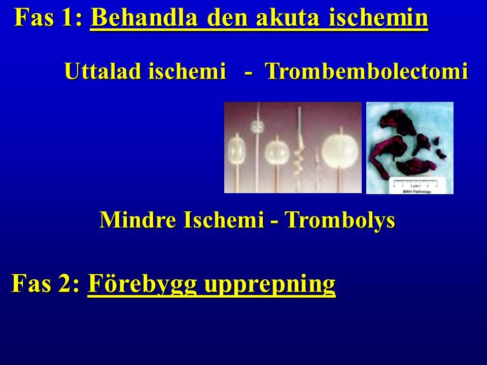 Uttalad ischemi - Trombembolectomi Mindre Ischemi - Trombolys Fas 1: Behandla den akuta ischemin Fas 2: Förebygg upprepning