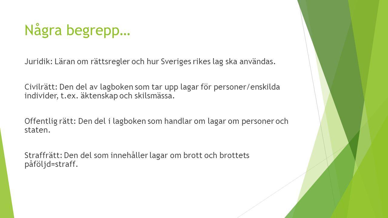 Några begrepp… Juridik: Läran om rättsregler och hur Sveriges rikes lag ska användas.