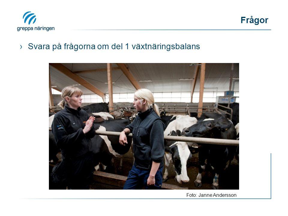 Frågor ›Svara på frågorna om del 1 växtnäringsbalans Foto: Janne Andersson
