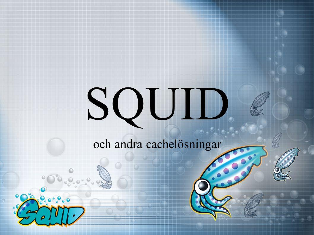 SQUID och andra cachelösningar
