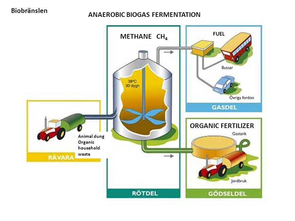 Animal dung Organic household waste ANAEROBIC BIOGAS FERMENTATION ORGANIC FERTILIZER FUEL METHANE CH 4 Biobränslen