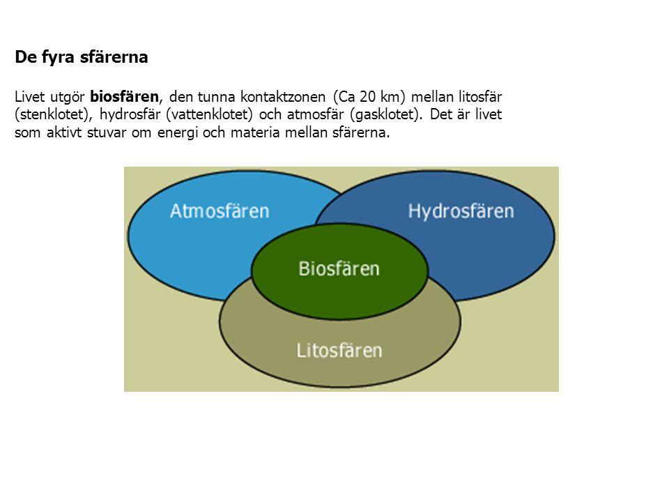 De fyra sfärerna Livet utgör biosfären, den tunna kontaktzonen (Ca 20 km) mellan litosfär (stenklotet), hydrosfär (vattenklotet) och atmosfär (gasklotet).