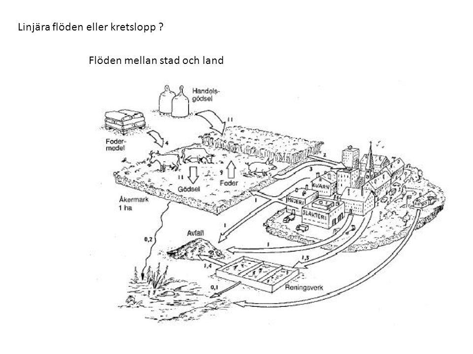 Linjära flöden eller kretslopp Flöden mellan stad och land