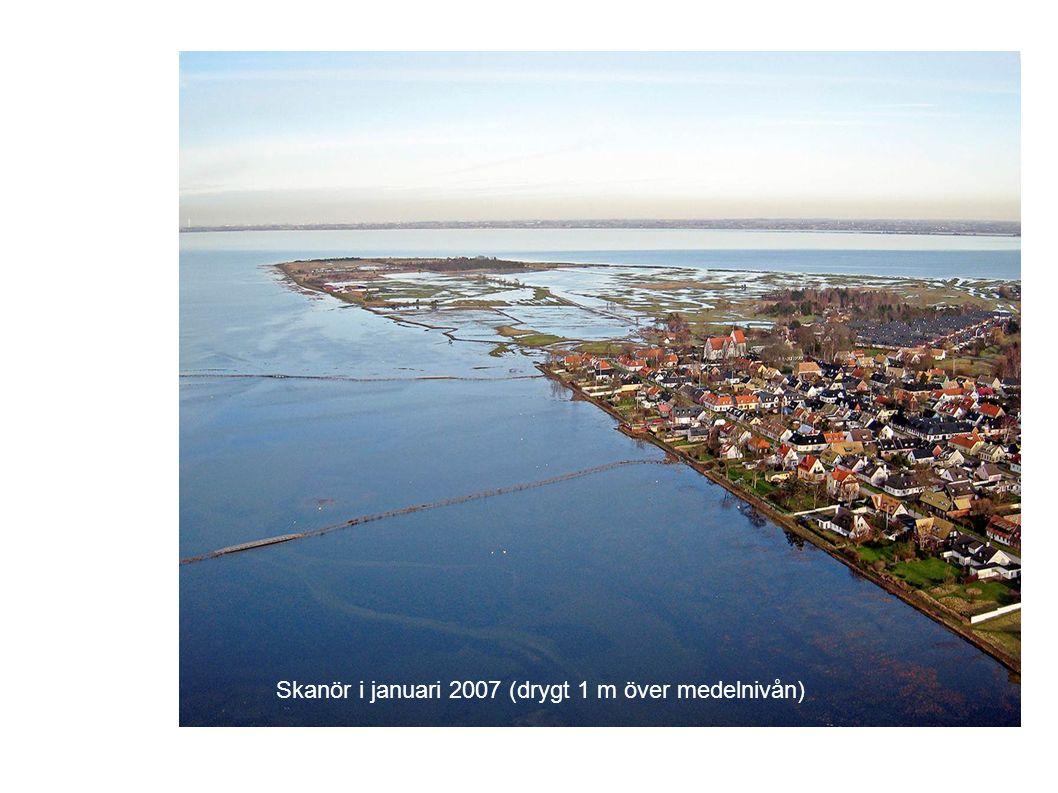 Skanör i januari 2007 (drygt 1 m över medelnivån)