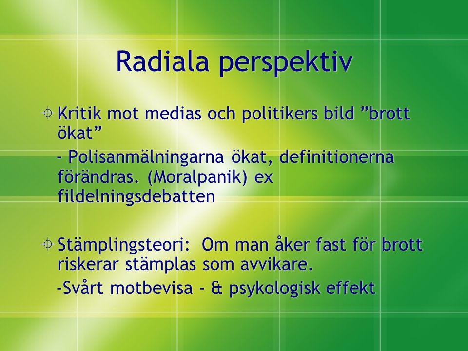 Radiala perspektiv  Kritik mot medias och politikers bild brott ökat - Polisanmälningarna ökat, definitionerna förändras.