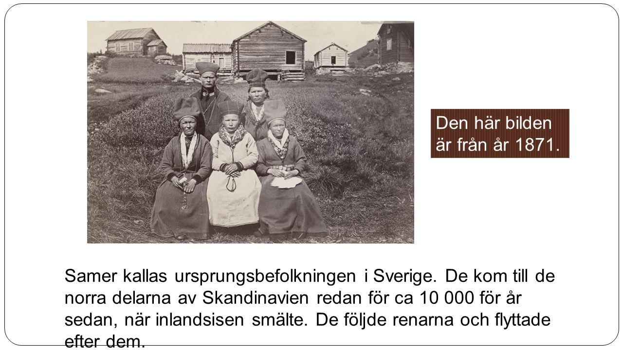 Samer kallas ursprungsbefolkningen i Sverige. De kom till de norra delarna av Skandinavien redan för ca 10 000 för år sedan, när inlandsisen smälte. D