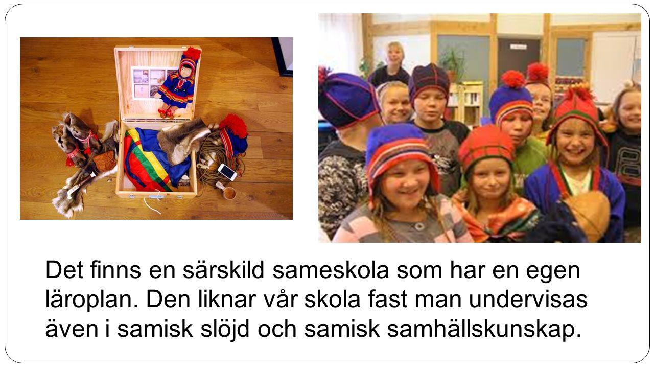 Det finns en särskild sameskola som har en egen läroplan. Den liknar vår skola fast man undervisas även i samisk slöjd och samisk samhällskunskap.