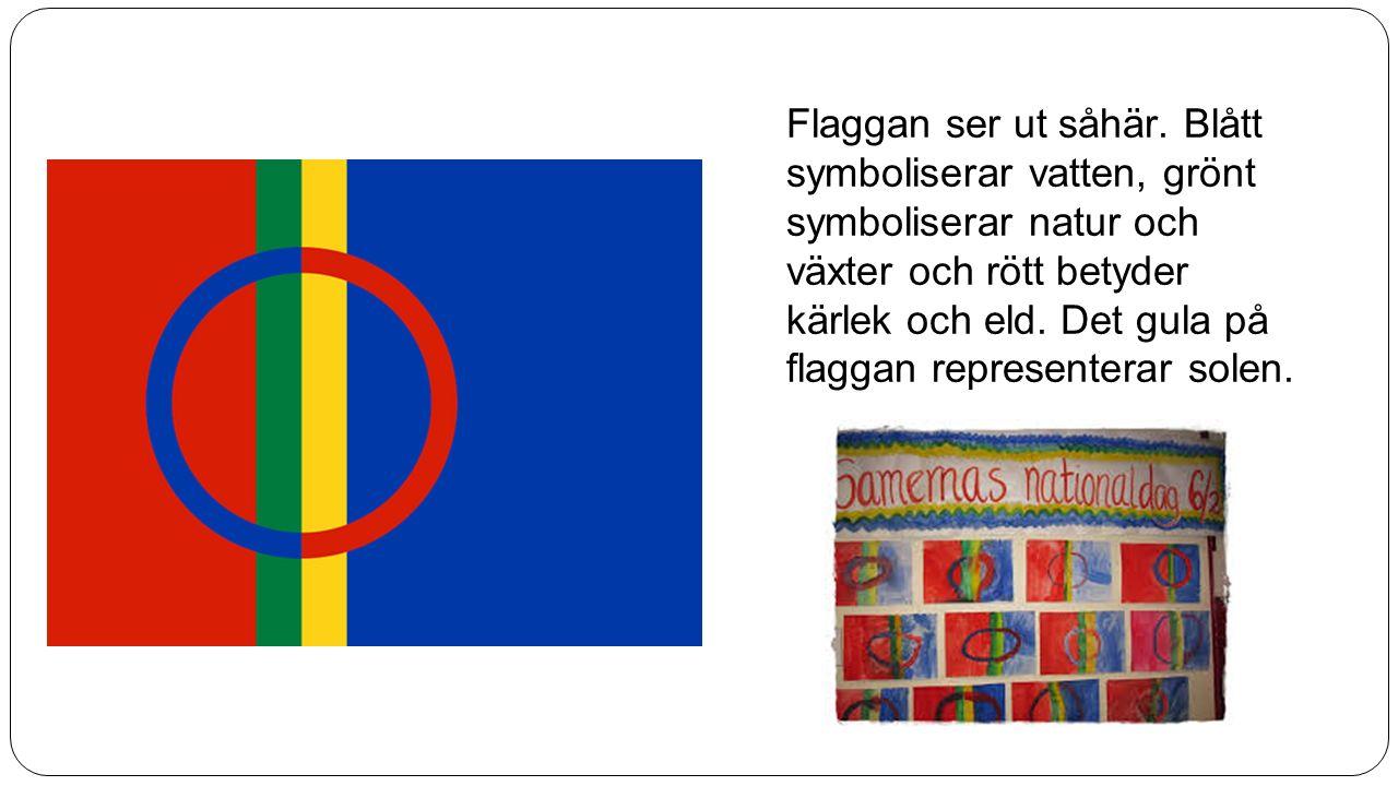 Flaggan ser ut såhär. Blått symboliserar vatten, grönt symboliserar natur och växter och rött betyder kärlek och eld. Det gula på flaggan representera