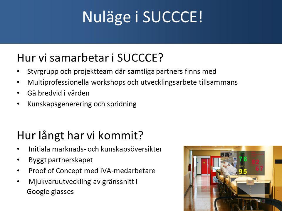 Hur vi samarbetar i SUCCCE.