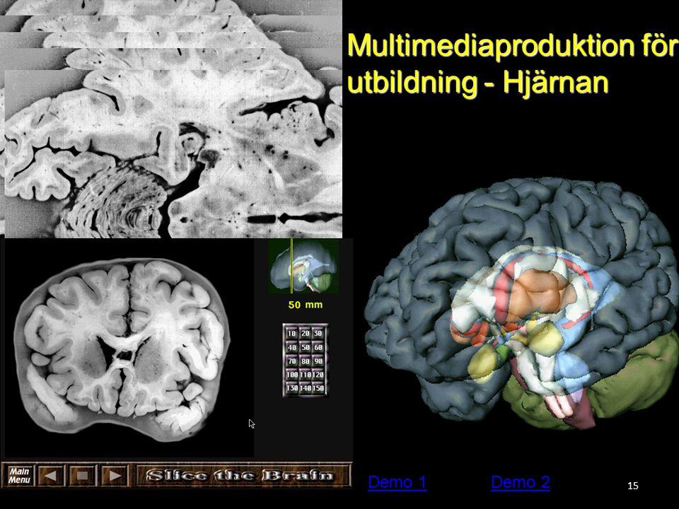15 Multimediaproduktion för utbildning - Hjärnan Demo 1Demo 2