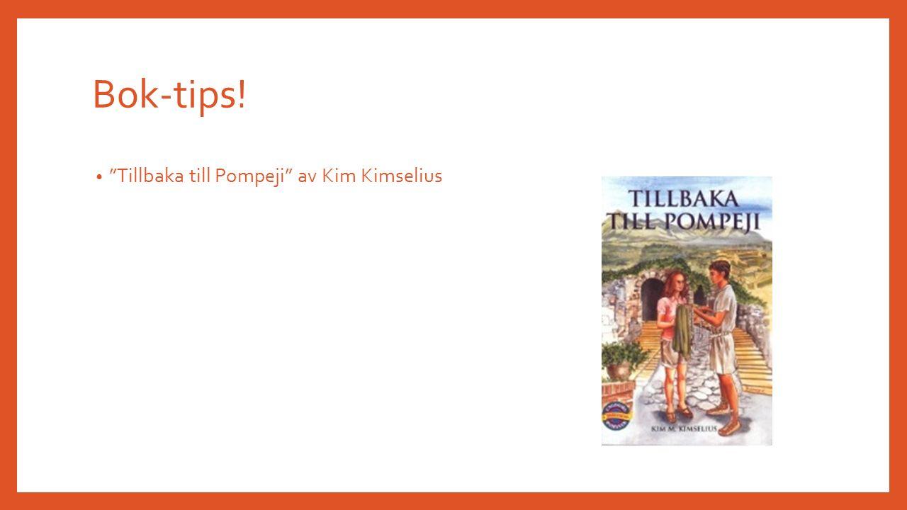 Bok-tips! Tillbaka till Pompeji av Kim Kimselius