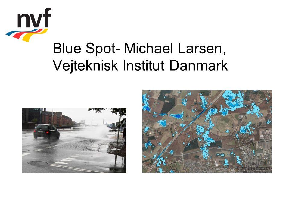 Blue Spot- Michael Larsen, Vejteknisk Institut Danmark