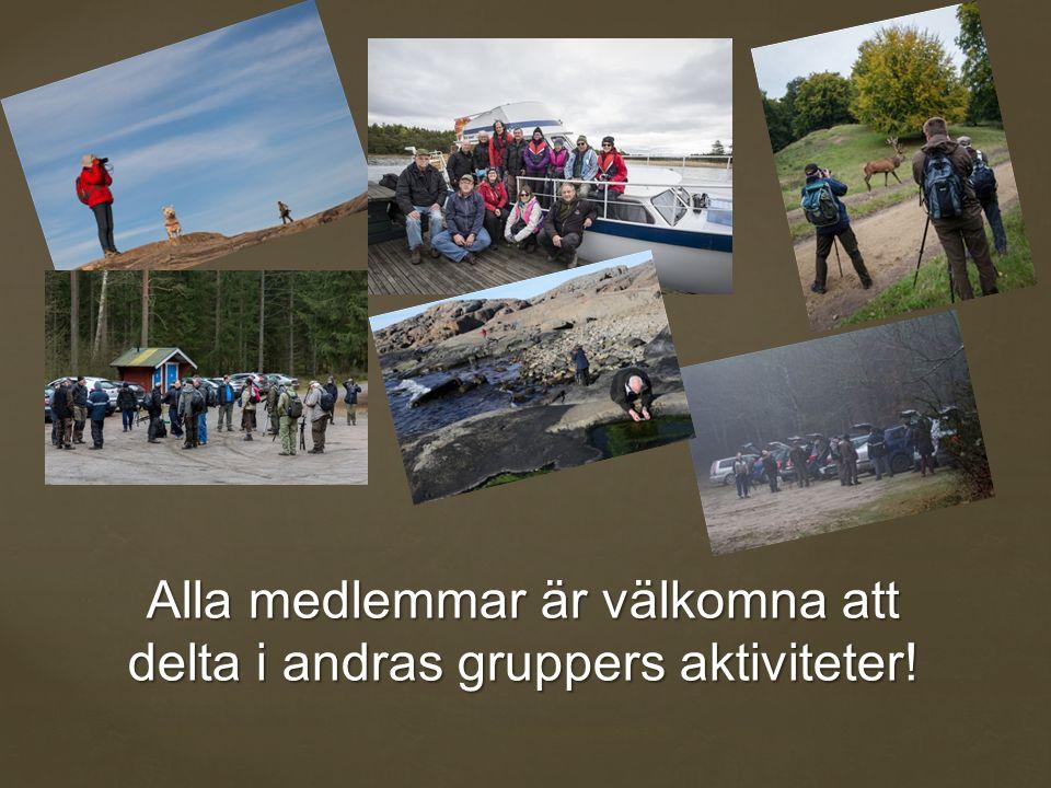 Alla medlemmar är välkomna att delta i andras gruppers aktiviteter!