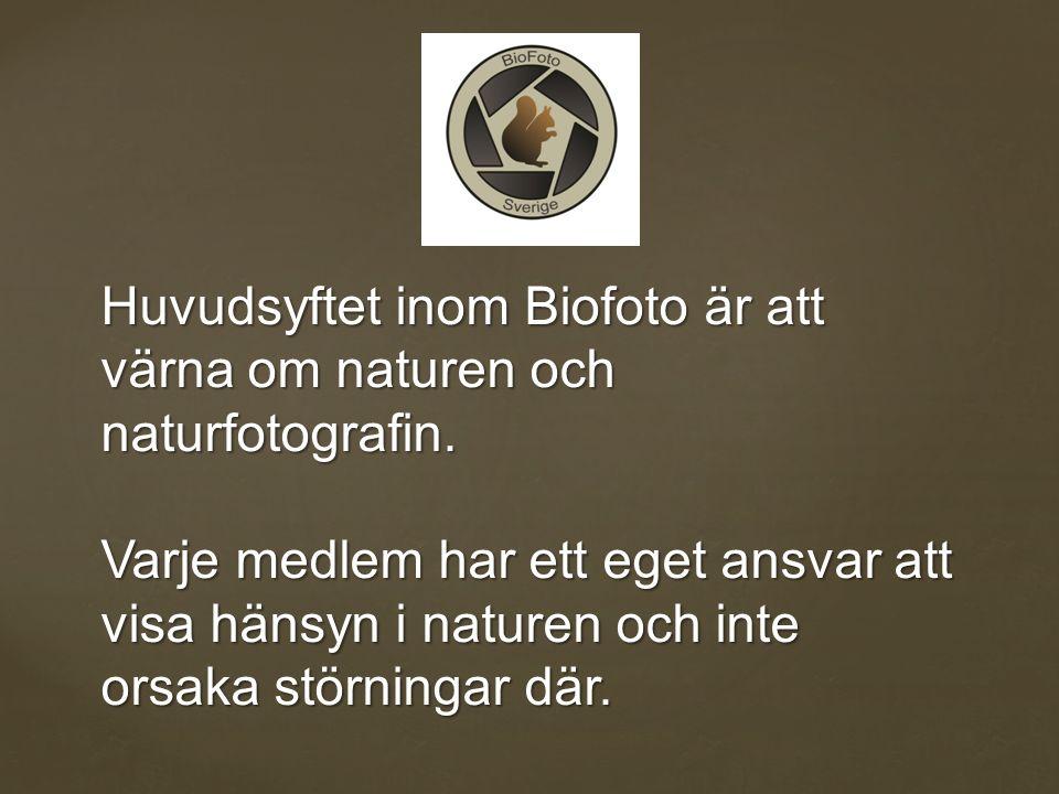 Huvudsyftet inom Biofoto är att värna om naturen och naturfotografin.