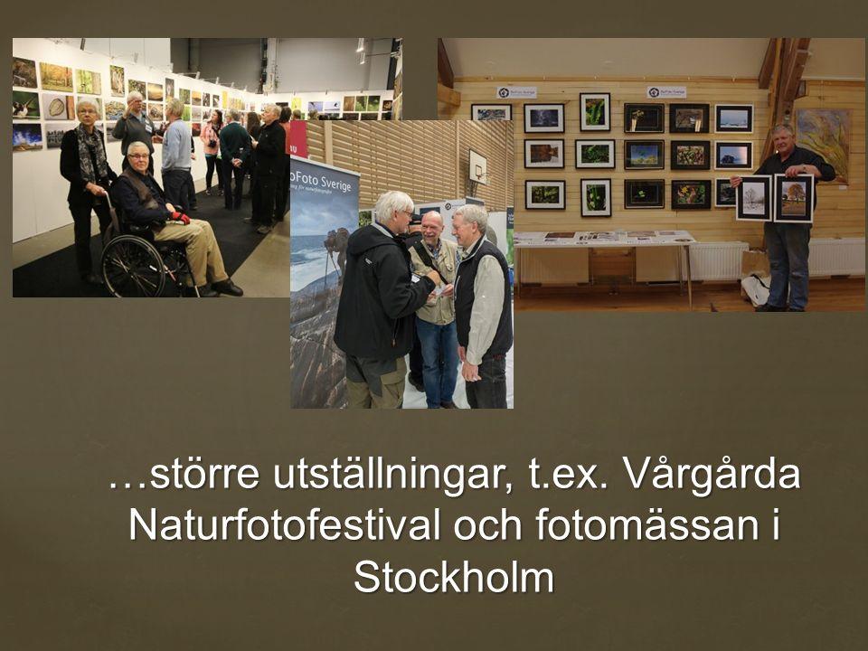 …större utställningar, t.ex. Vårgårda Naturfotofestival och fotomässan i Stockholm