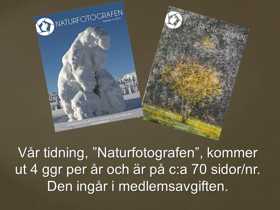 Vår tidning, Naturfotografen , kommer ut 4 ggr per år och är på c:a 70 sidor/nr.