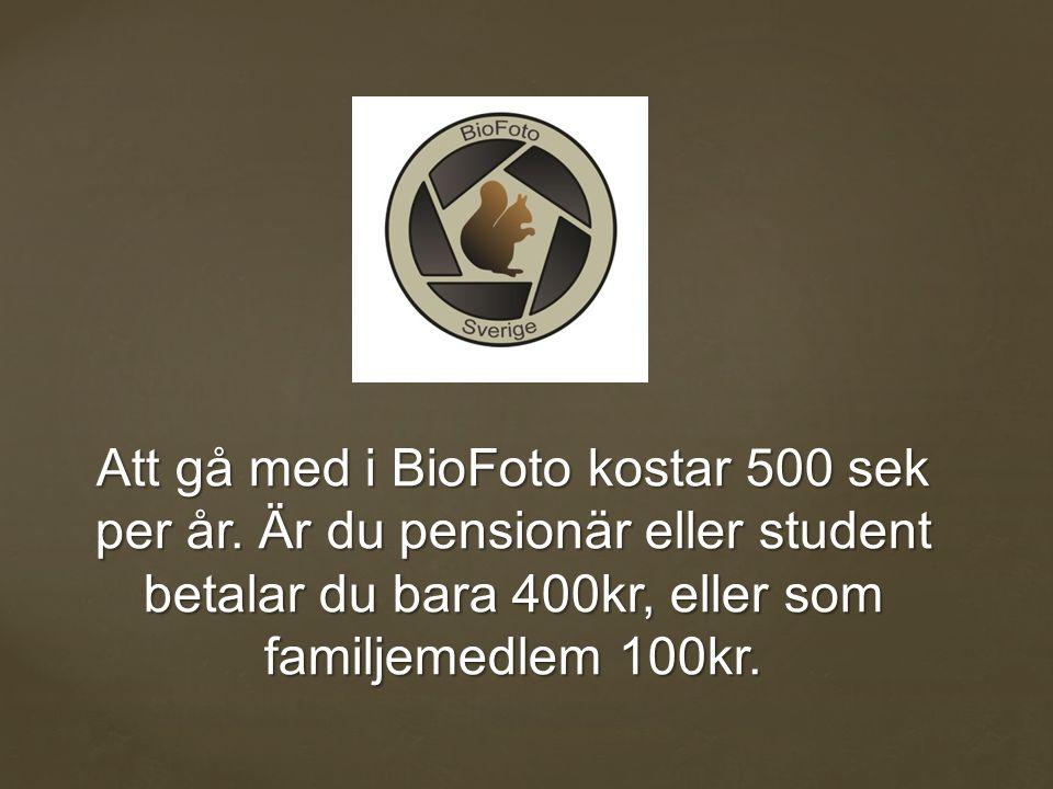 Att gå med i BioFoto kostar 500 sek per år.