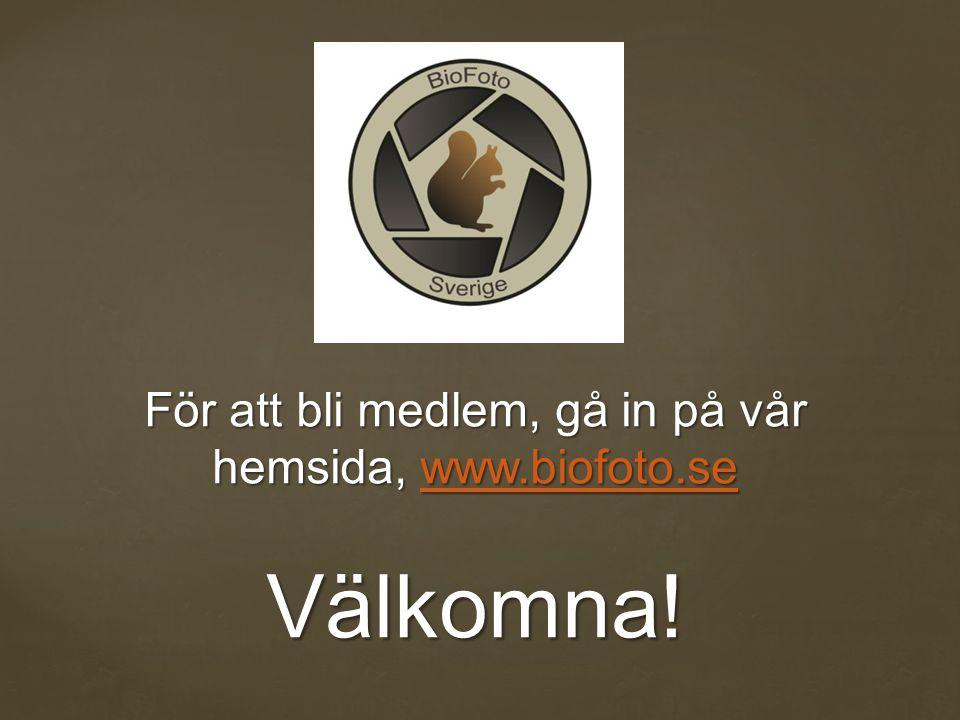 För att bli medlem, gå in på vår hemsida, www.biofoto.se Välkomna! www.biofoto.se