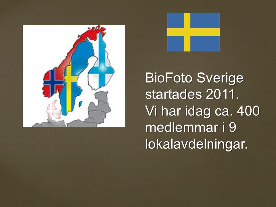 BioFoto Sverige startades 2011. Vi har idag ca. 400 medlemmar i 9 lokalavdelningar.