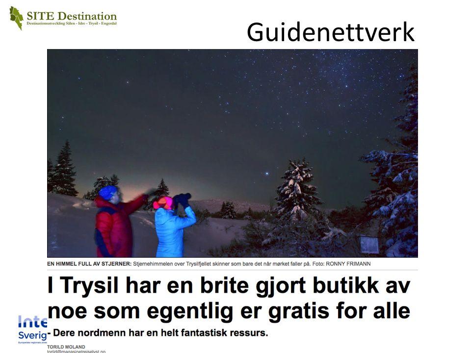 Guidenettverk
