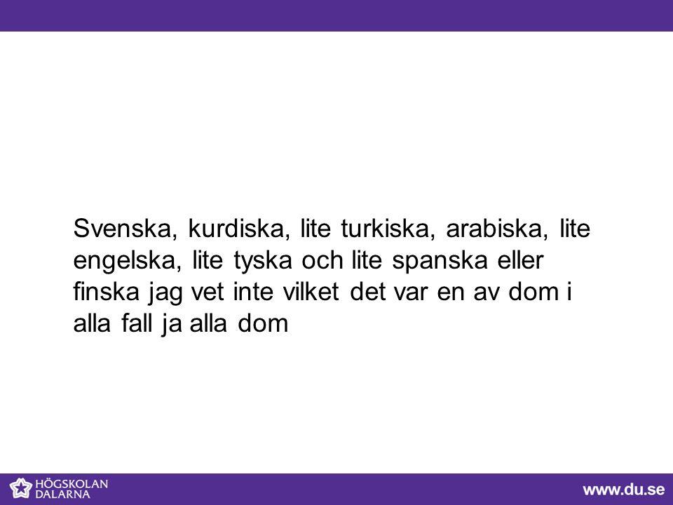 Svenska, kurdiska, lite turkiska, arabiska, lite engelska, lite tyska och lite spanska eller finska jag vet inte vilket det var en av dom i alla fall