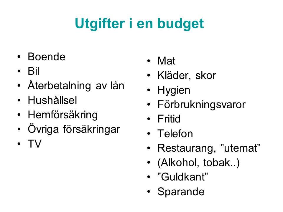Utgifter i en budget Boende Bil Återbetalning av lån Hushållsel Hemförsäkring Övriga försäkringar TV Mat Kläder, skor Hygien Förbrukningsvaror Fritid
