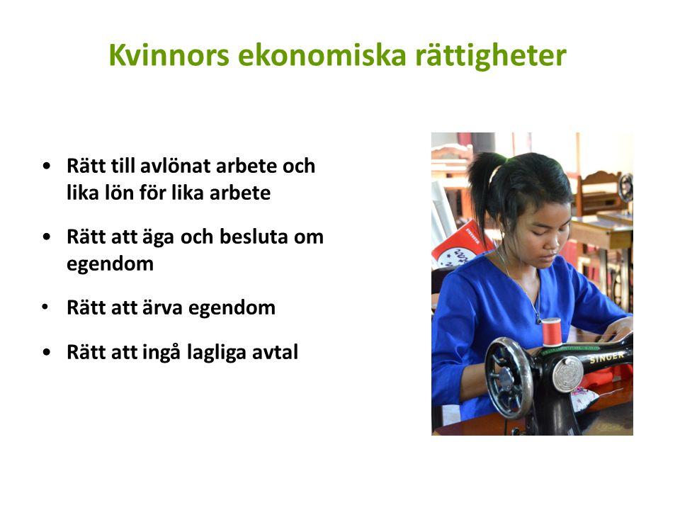 Kvinnors ekonomiska rättigheter Rätt till avlönat arbete och lika lön för lika arbete Rätt att äga och besluta om egendom Rätt att ärva egendom Rätt att ingå lagliga avtal